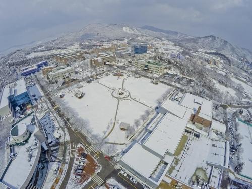 [베리타스알파]코리아텍 취업률 80.2%, 전국 최상위권 유지